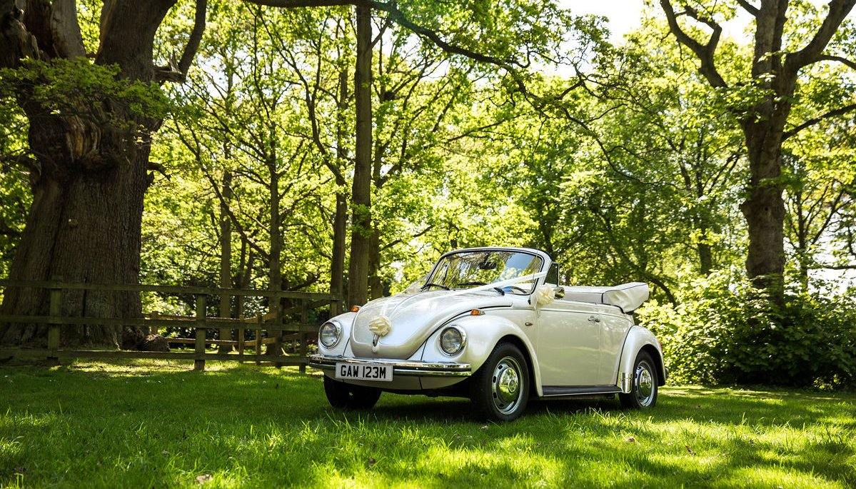 Ivory vintage VW Beetle cabriolet with roof down,parked under a tree in Drayton Manor Hotel grounds